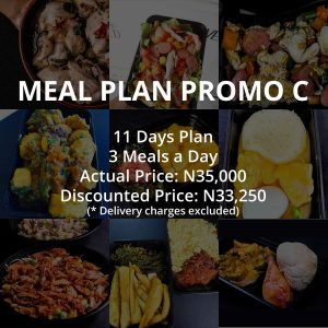 11 Days Meal Plan Combo C